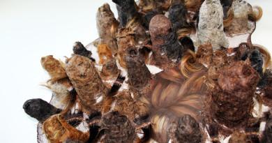 exposicao-cabelos