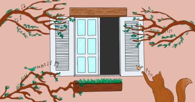 janela teste 3